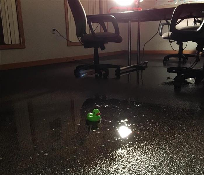 SERVPRO Duck in standing water of conference room.