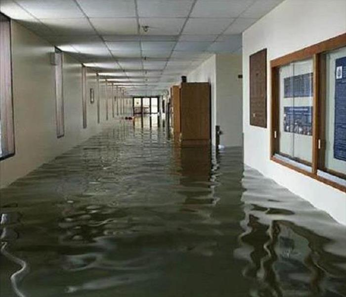 Office hallway affected by two feet of water