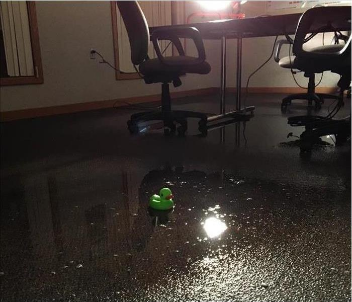 wet carpet, standing water, water damage in an office.