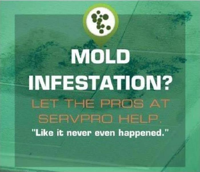 """Mold Infestation? Let the pros at SERVPRO Help."" ""Like it never even happened."" words on green background"