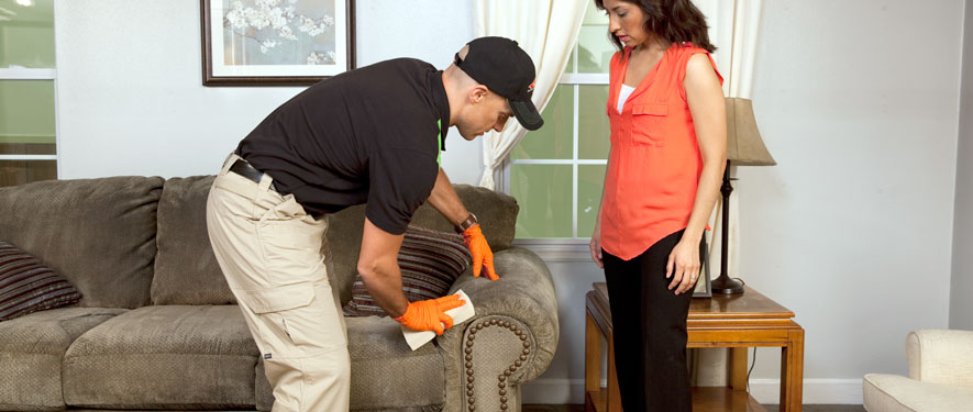 Easton, PA carpet upholstery cleaning